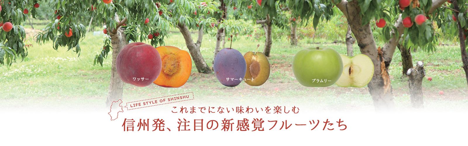 Lifestyle of Shinshu 信州発、注目の新感覚フルーツたち
