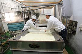 水と米、伝統と個性で醸される、信州の地酒