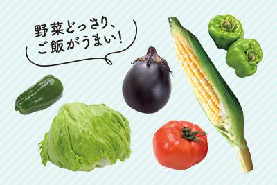 野菜どっさり、ご飯がうまい!