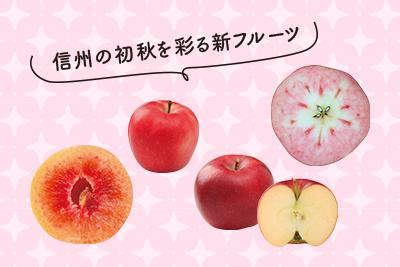 信州の初秋を彩る新フルーツ