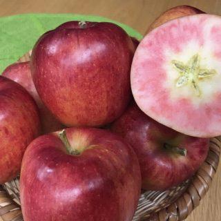 フルーツリレー☆目にも鮮やか赤肉りんご!!🍎