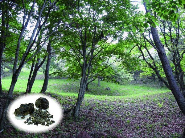 縄文人が掘った鉱山跡が今も窪んで見ることができる星糞峠遺跡と黒曜石(左下)