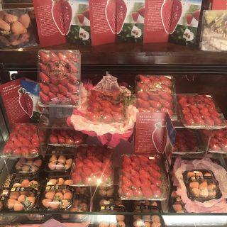信州の甘~いイチゴはいかが(^^♪