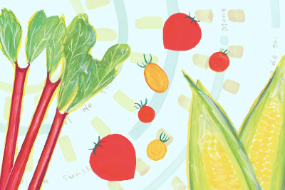 ライフスタイル・オブ・信州「おいしい!に出会える標高1000mへ 天空の地に育つ極上の野菜たち」