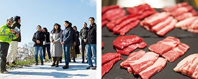 ダボス牧場と肉