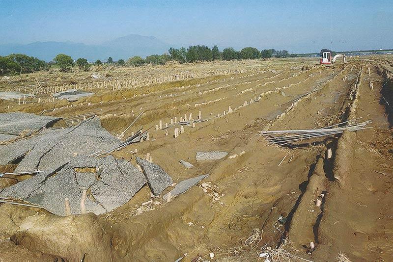 被災直後の長芋畑