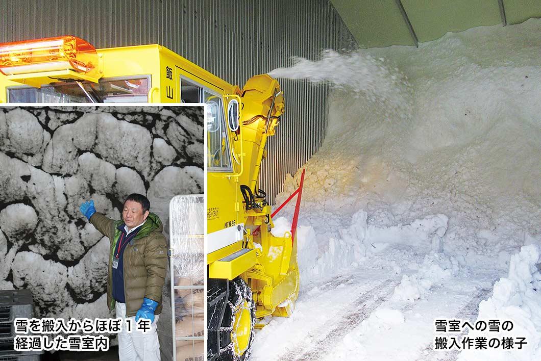 雪室への雪の搬入作業の様子と1年後