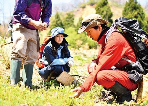 山菜採りハイキングイメージ
