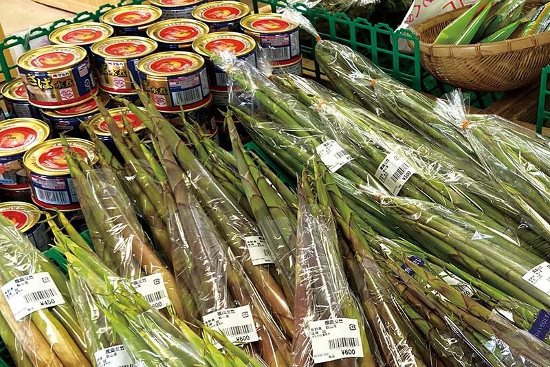 「根曲り竹」近くにサバの水煮缶