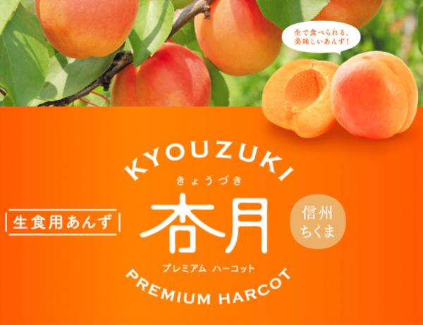 apricot_line