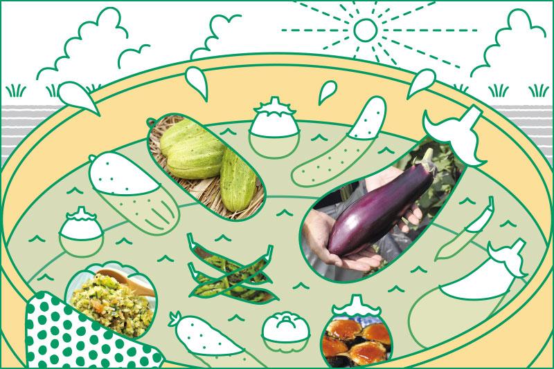 ライフスタイル・オブ・信州「伝統の滋味に出会う この夏食べたい絶品野菜」